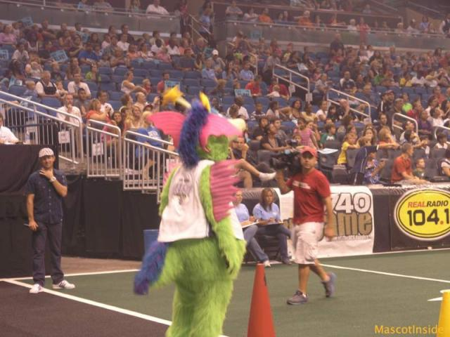 20th Celebrity Mascot Games